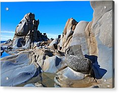 Stump Beach Acrylic Print by Daniel Furon