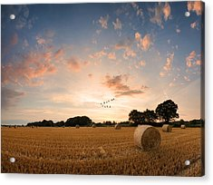 Stunning Summer Landscape Of Hay Bales In Field At Sunset Digital Painting Acrylic Print by Matthew Gibson