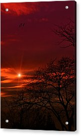 Suburban Skies Acrylic Print by Tom York Images