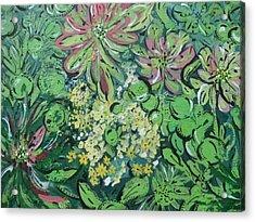 Succulents At Alcatraz Acrylic Print by Jamie Scott