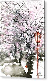 Sumie No.3 Cherry Blossoms Acrylic Print by Sumiyo Toribe