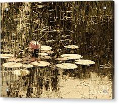 Summer Afternoon Acrylic Print by Marcia Lee Jones