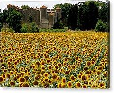 Summer Bliss Acrylic Print by France  Art