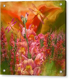 Summer Dragons - Square Acrylic Print by Carol Cavalaris