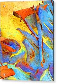 Summer Eucalypt Abstract 29 Acrylic Print by Margaret Saheed