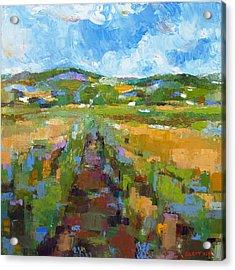 Summer Field 1 Acrylic Print by Becky Kim