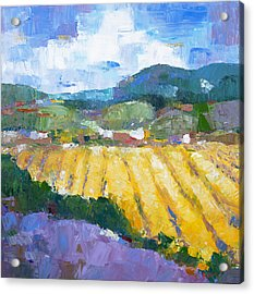 Summer Field 2 Acrylic Print by Becky Kim