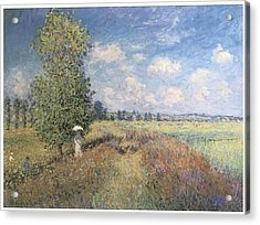 Summer Field Of Poppies Acrylic Print by Claude Monet