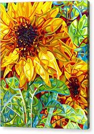 Summer In The Garden Acrylic Print by Mandy Budan