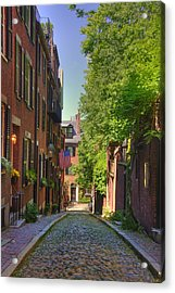 Summer On Acorn St. Acrylic Print by Joann Vitali