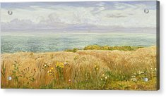 Summer On The Cliffs Acrylic Print by John Brett