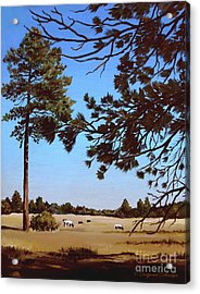 Summer Serenity Acrylic Print by Suzanne Schaefer