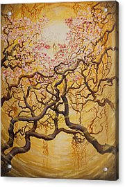 Sun And Sakura Acrylic Print by Vrindavan Das