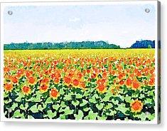 Sun Flower Landscape Acrylic Print by Yury Malkov