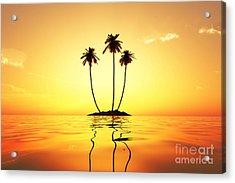 Sun In Palms Acrylic Print by Aleksey Tugolukov