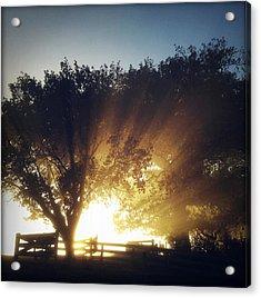 Sun Rays Acrylic Print by Les Cunliffe