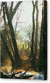 Sun Splash Acrylic Print by Douglas Stucky