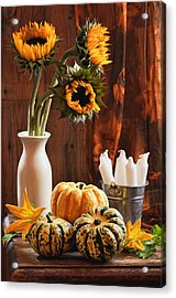 Sunflower And Gourds Still Life Acrylic Print by Amanda And Christopher Elwell