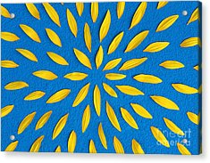 Sunflower Petals Pattern Acrylic Print by Tim Gainey