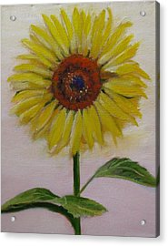 Sunflower Acrylic Print by Sherry Robinson