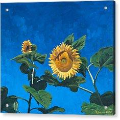 Sunflowers Acrylic Print by Marco Busoni