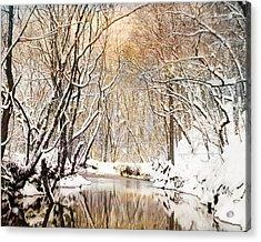 Sunkissed Winter Creek Acrylic Print by Jai Johnson
