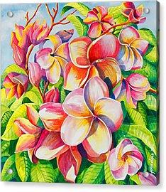 Sunlit Plumeria Acrylic Print by Janis Grau