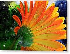 Sunny Days Ahead...... Acrylic Print by Tanya Tanski