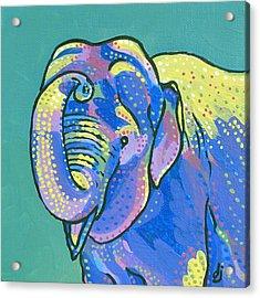 Sunny Elephant Acrylic Print by Dorothy Jenson