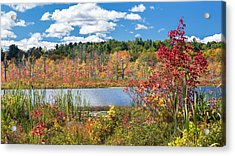 Sunny Fall Day Acrylic Print by Bill Wakeley