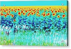 Sunny Kansas Acrylic Print by Ann Johndro-Collins