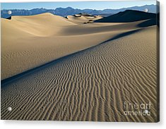 Sunrise At Mesquite Flat Sand Dunes Acrylic Print by Sandra Bronstein
