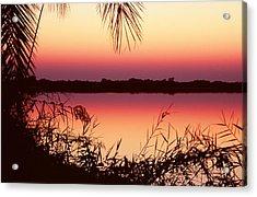 Sunrise On The Okavango Delta Acrylic Print by Stefan Carpenter