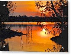 Sunrise Over Orlando Wetlands Acrylic Print by AnnaJo Vahle