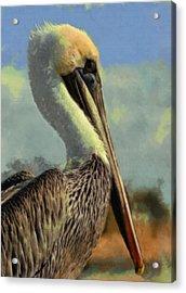 Sunrise Pelican Acrylic Print by Ernie Echols