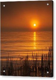 Sunrise Through The Fog Acrylic Print by Scott Norris