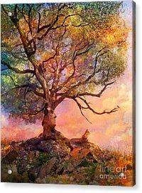 Sunset At Fox Mountain Acrylic Print by Aimee Stewart