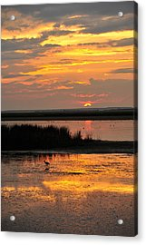 Sunset Beauty Acrylic Print by Birches Photography