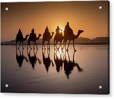 Sunset Camel Trek On The Beach Acrylic Print by Charles Bowman