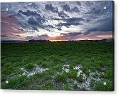 Sunset In The Swamp Acrylic Print by Eti Reid