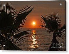 Sunset Acrylic Print by Jelena Jovanovic