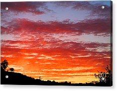 Sunset Acrylic Print by Natalie Kinnear