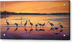 Sunset Spoonbills Acrylic Print by Laurie Hein