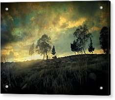 Sunset Trip II Acrylic Print by Taylan Apukovska