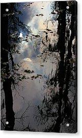 Sunshadow Acrylic Print by Rdr Creative