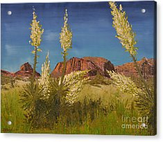 Superstition Mountain Acrylic Print by Jack Hedges