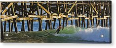Surfer Dude 4 Acrylic Print by Scott Campbell