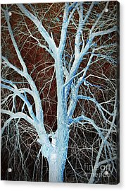 Surreal Blue Tree Acrylic Print by Chalet Roome-Rigdon