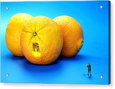 Surrender Mr. Oranges Little People On Food Acrylic Print by Paul Ge
