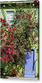 Surrounded By Bougainvillea Acrylic Print by Liane Wright